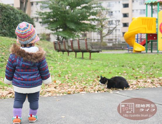 blog-photo-20151209